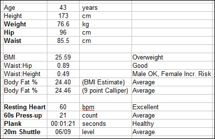 personal training tracking sheet thevillas co